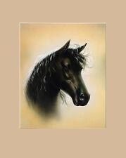 S. Poorter Portraet Pferd Poster Kunstdruck Bild 50x40cm - Kostenloser Versand