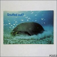 Avant Card #6686 Southern Great Barrier Reef Dugong WWF 2002 Postcard (C) (P653)