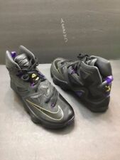 0f84fde0f6d2 Nike Men s Nike LeBron 13 Athletic Shoes for sale