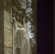 Dead Can Dance - Within The Realm Of A Dying S (NEW CD)
