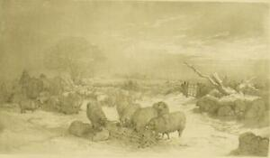 132 year old photogravure engraving print; by Edward Duncan 1888