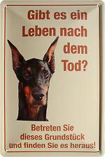 Blechschild Warnung hier wache ich Hund Dobermann Dog 20x30 Reklame Vintage 211
