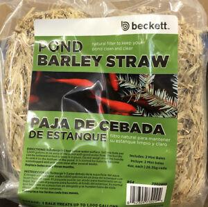 Beckett Barley Straw for Ponds