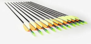 """SET: 20 glassfibre bolts 28"""" of Ek Archery Research + spareparts to UK"""