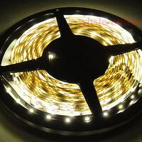 Warm White 5M 16.4FT 60leds/M 3528 SMD Flexibility LED Strip Lights 12V DIY