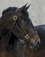Dover Saddlery Palermo Halter In Chocolate - Size Horse F/S