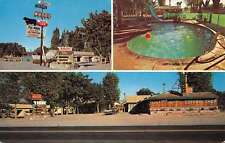 Lovelock Nevada Sturgeons Log Cabin Motel Vintage Postcard K41752