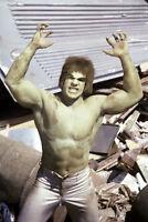 Lou Ferrigno The Incredible Hulk green barechested 11x17 Mini Poster