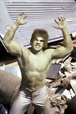 Lou Ferrigno The Incredible Hulk green barechested 11x17 Mini Poster