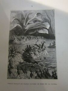 LES INFORTUNES D'UNE POPULATION D'INSECTES - ILLUSTRÉ par C. RENARD-Relié-1879