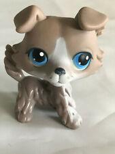 Authentique Petshop Dog Chien Collie Colley LPS 67