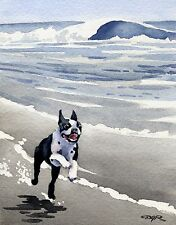 Boston Terrier At The Beach Dog Painting 8 x 10 Art Print Signed by Artist Djr