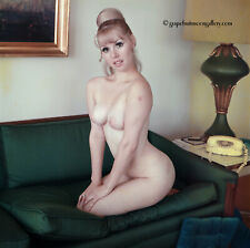 Bunny Yeager Pinup Camera Transparency Pretty Doe Eyed Nude Model Sandy Bowman