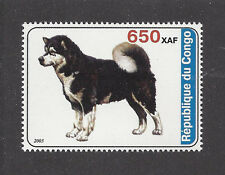 Dog Art Print Full Body Portrait Postage Stamp Alaskan Malamute Congo 2003 Mnh