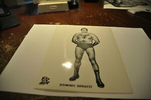 domenic denucci wrestling black & white lutte press photo logo grand prix wwe