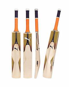 Puma Evo Speed 7 English Willow Cricket Bat - SH