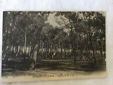 St Denis-D'OLERON - La foret de pins