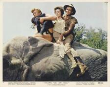 """TARZAN THE APE MAN""-ORIGINAL PHOTO-COLOR-DENNY MILLER-ELEPHANT"