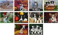 Cardigan Welsh Corgi Puppies Notecards