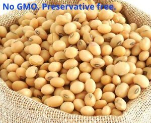 ORGANIC NON GMO SOY BEANS - SOYA BEANS - FOR TOFU - SOY MILK 25 Gram to 10 KG