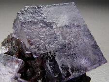 Fluorit auf Sphalerit, Elmwood Mine, Tennessee