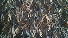 """DRT DUCKBLIND COTTON POLY TWILL CAMO FABRIC 60""""W BTY CAMOUFLAGE WATER REPELLENT"""