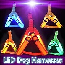 Rechargeable Chest Harness LED Pet Dog Glow Flashing Light-up Night Safety