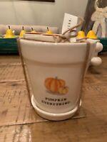 New Magenta Rae Dunn Pumpkin Everything Fall Ceramic Flower Pot Planter