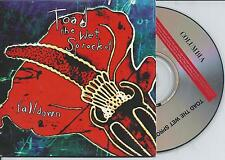 TOAD THE WET SPROCKET - Fall down CD SINGLE 2TR CARDSLEEVE Austria 1994 RARE