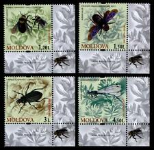 Insectos. 4w. eckrand (2). Moldova 2009