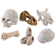 Exo Terra Resin Skeleton & Skull Reptile Decor - Spider Snake Vivarium Accessory