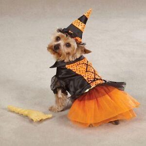 Spellhound Witch Female Dog Costume Casual Canine Polyester ZA17550817