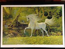 "Unicorn litho print by Emilie ""Rainbow"" Touraine 24X36"