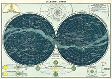 Celestial Chart Astrology Vintage style Poster Cavallini & Co 20 x 28 Wrap