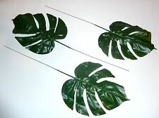 12 x Philodendron/hojas follajes grande 47 cm