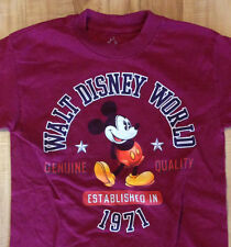 Walt Disney World Mickey Mouse T Shirt Youth Size Small S by Hanes