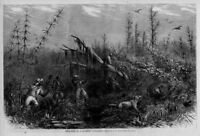 NEGRO BEAR HUNTING WITH DOGS IN A SOUTHERN CANE BREAK SPORTSMEN TAKING AIM NEGRO