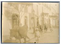 Algérie, Alger (الجزائر), Route de Constantine  Vintage citrate print. Ecriture
