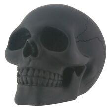 NEW! Medium Black Skull Skeleton Figurine Desk Halloween Goth Dark Gift 7749