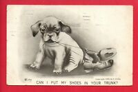 DOG CHEWING SHOES  COMIC 1909 COLBY POSTCARD