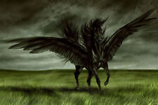 Framed Print - Black Pegasus with Outspread Wings in a Grassy Field (Picture)