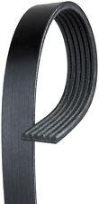 ACDelco 6K870 Serpentine Belt