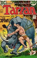Tarzan 212 DC 1972 VG Joe Kubert Edgar Rice Burroughs Rhino