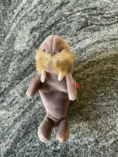 """Rare Vintage Ty Beanie Baby """"Jolly The Walrus"""" Retired 1996 Style #4082"""