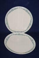 "Franciscan Blue Fancy White Stone Ware - Lot of 2 Dinner Plates 10 1/4"" Diameter"