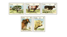 KUB8413 Different breeds of cows 5 pcs MNH 1984