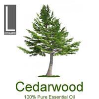 Cedarwood Atlas 100% Pure Essential Oil 100ml