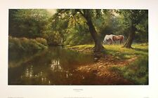 "FRANK WRIGHT ""Riverside Pasture"" wild horses NEW art SIZE:33cm x 61cm  RARE"