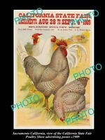 OLD LARGE HISTORIC PHOTO OF SACRAMENTO CALIFORNIA POULTRY SHOW POSTER c1909 1