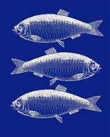 3 blue fish VINTAGE ENAMEL METAL TIN SIGN WALL PLAQUE